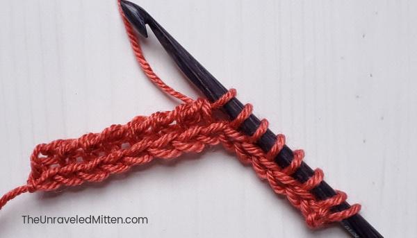 Tunisian Simple Stitch Step 4